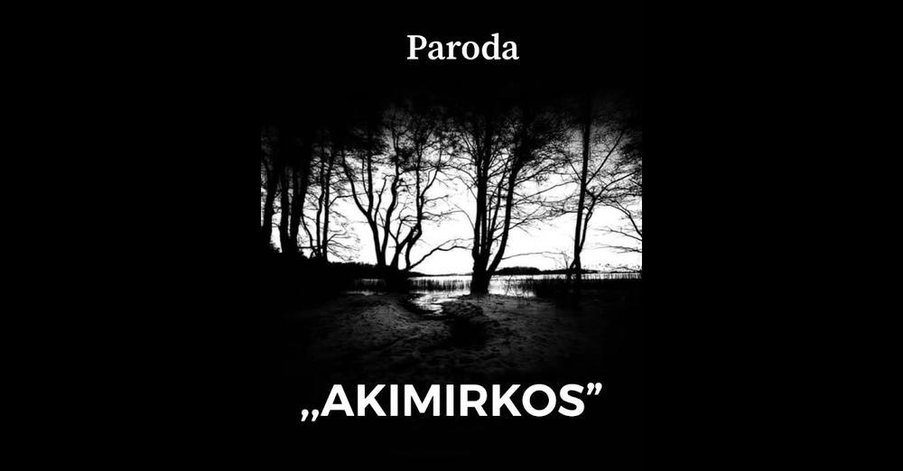 "paroda ""Akimirkos"""